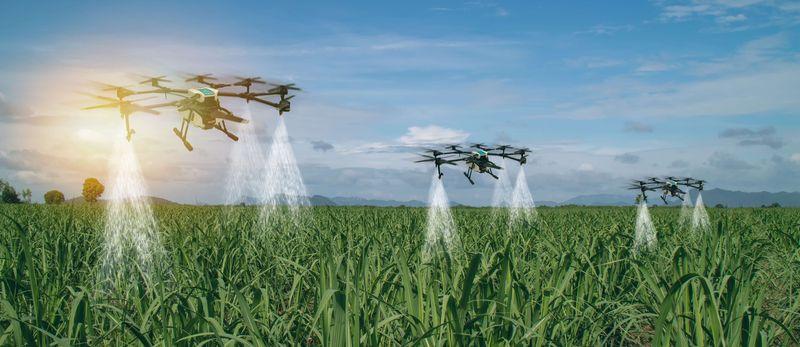 The future of pest control | Certis Europe